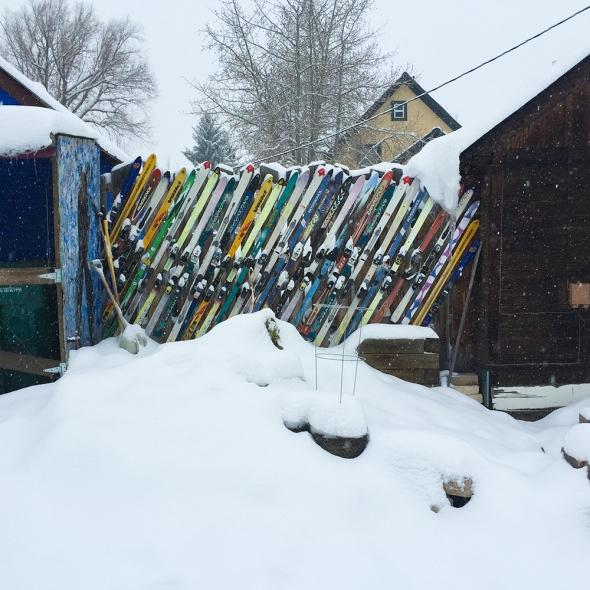 wintersolstice_kms021