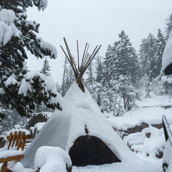wintersolstice_kms026